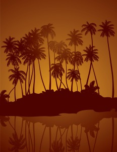 tropical-night-vector-background_Gy6ChgDO