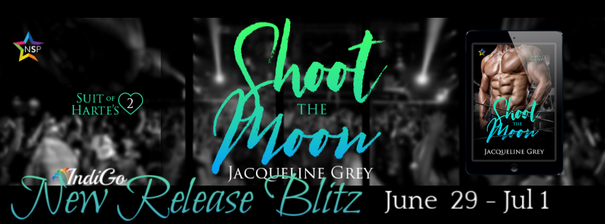 Shoot the Moon Banner 2